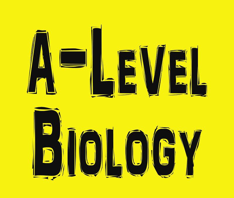 A-level Biology Tutor in Ho Chi Minh City