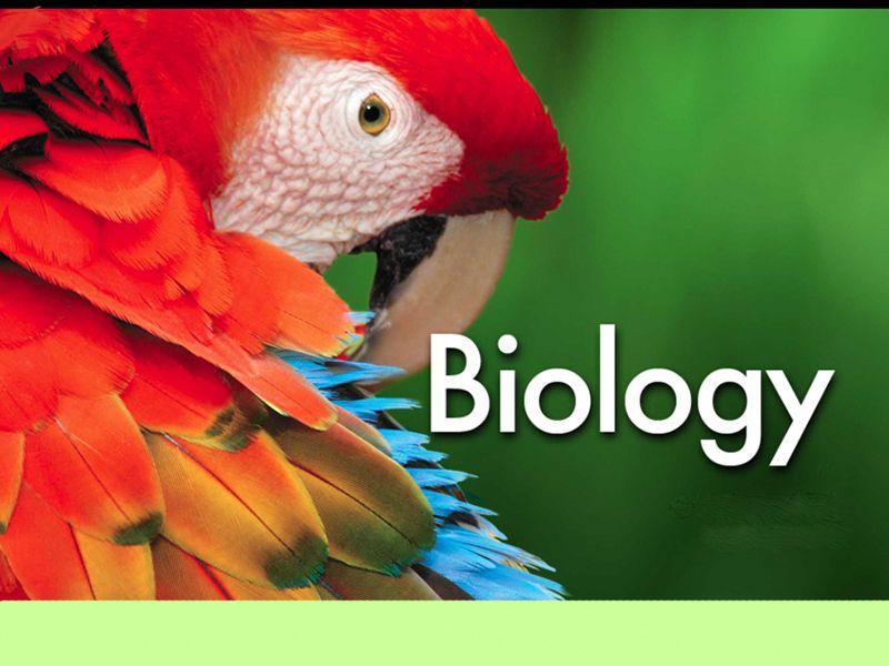IGCSE Biology Tutor in Ho Chi Minh City